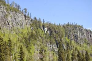 The palisades green